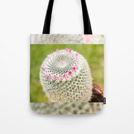 Cactus flowering pink detail blossoms Tote Bag