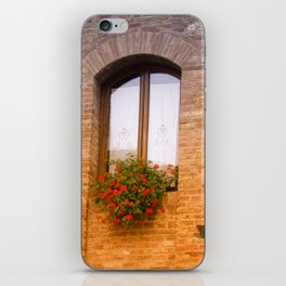 lovely windows in Italy iPhone Skin
