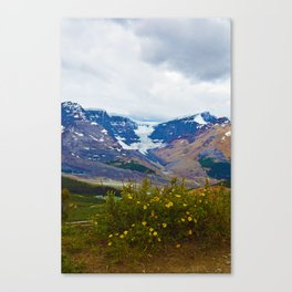 Athabasca Glacier in Jasper National Park, Canada Canvas Print