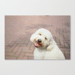Puppy Doggy Canvas Print