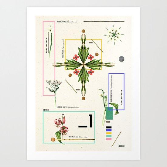 Wild Flowers_1 Art Print