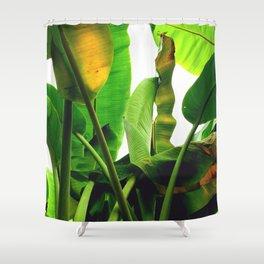 p a l m s Shower Curtain