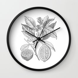 Lemon botanical drawing Wall Clock