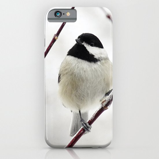 Chicka Chickadee iPhone & iPod Case