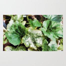 Zucchini plants Rug