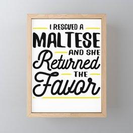 Rescued a Maltese She Returned the Favor Framed Mini Art Print