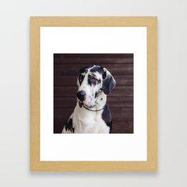 Baktus Framed Art Print