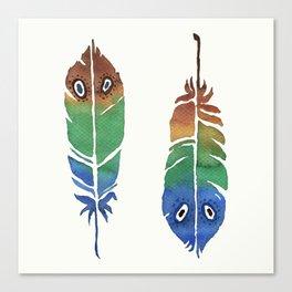 Colorful Decorative Feathers Canvas Print