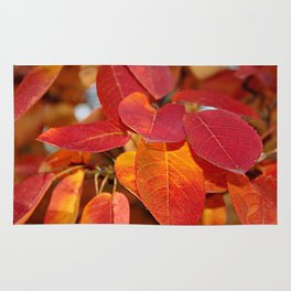 Autumn Glory - Juneberry leaves, Amelanchier Rug