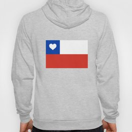 Texas State Flag with Heart Hoody