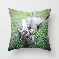 pit bull Throw Pillows featuring Pit Bull Puppy by Paw Prints By Jamie