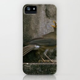 Big Eyed Grieve iPhone Case