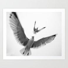 Seaguls {Eight} Art Print