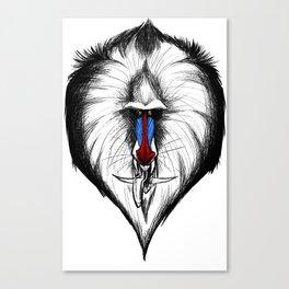 Dragon Monkey Canvas Print