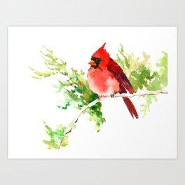 Cardinal Bird, stet birds decor design cardinal bird lover gift Art Print