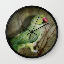 Indian Ringneck Parrot - Cherokee Wall Clock