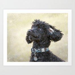 Did You Say Cookie? Art Print