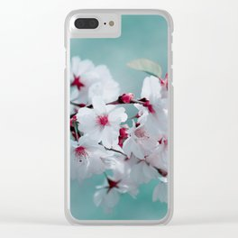 Spring 150 Clear iPhone Case