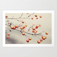 berries in the woods Art Print
