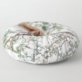 Seed Raider Floor Pillow