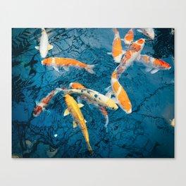 Koi Pond in Japan Canvas Print