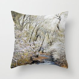 A Creek on a Snowy Day in Boulder, Colorado Throw Pillow