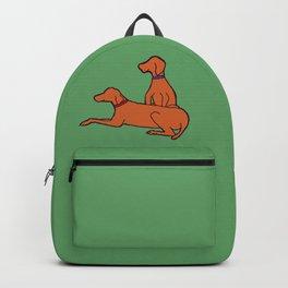 Vizslas on Green Backpack