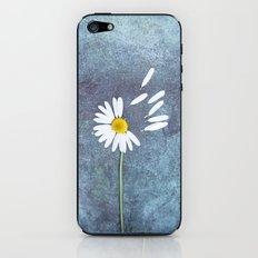 Daisy III iPhone & iPod Skin