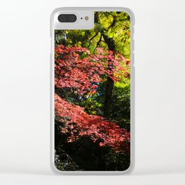 autumn in the light Clear iPhone Case