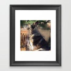 Boo Bear Framed Art Print