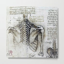 Leonardo Da Vinci human body sketches - skeleton Metal Print