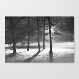 Snow in March Canvas Print