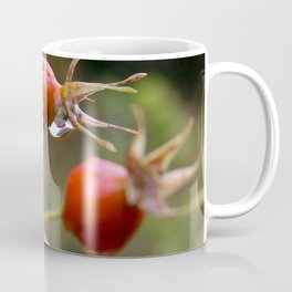 MILLCREEK CANYON, UTAH Coffee Mug