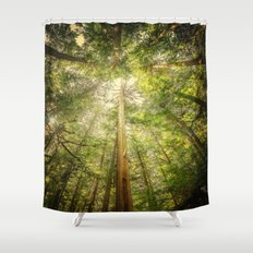 Forest Tree Tops Shower Curtain
