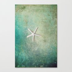 single starfish Canvas Print