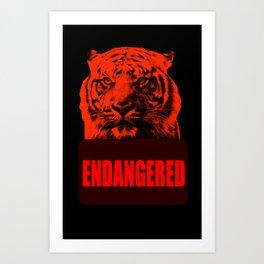 Endangered Tiger Art Print