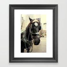 City Slickin' Framed Art Print