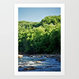 A Creek and Forest in West Virginia  Art Print