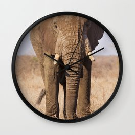 Elephant in Kruger National Park, South Africa Wall Clock