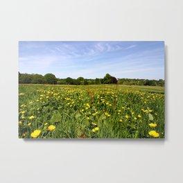 Wildflowers On Hampstead Heath, London, England Metal Print