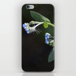 Tiny Blue Flowers iPhone Skin