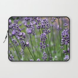 Lavender Plant Laptop Sleeve