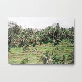 Tegalalang Rice fields near Ubud Bali, Indonesia | Travel film photography wall art Metal Print