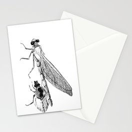 Dragonfly Molting Stationery Cards