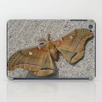 moth iPad Cases featuring Moth by Deb MacNeil
