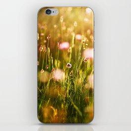 Sunny Meadow iPhone Skin