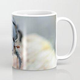 Close-up of a Dor / Dumbledore Dung Beetle Coffee Mug