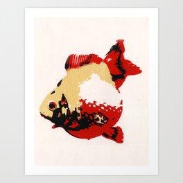 Gold Fish 1 Art Print