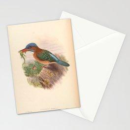 Actenoides Hombroni Kingfisher Vintage Birds Stationery Cards