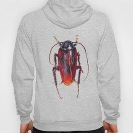 Cockroach Hoody